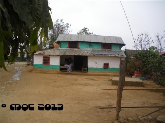 IMGP2218 (Small)