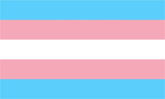 transgender-pride-flag_dezeen_